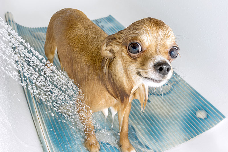Not Showering With A Shower Mat