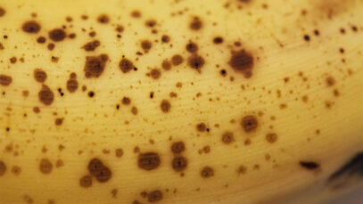 You Should Never, Ever Eat These Foods On An Empty Stomach banana